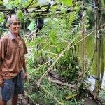ASEAN,plastic debris,Action Plan