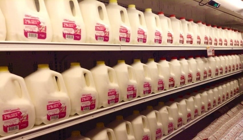 dairy-consumers