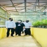 seedlingcenter