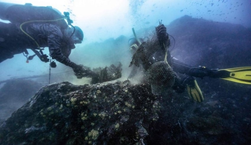 underwaterdivers